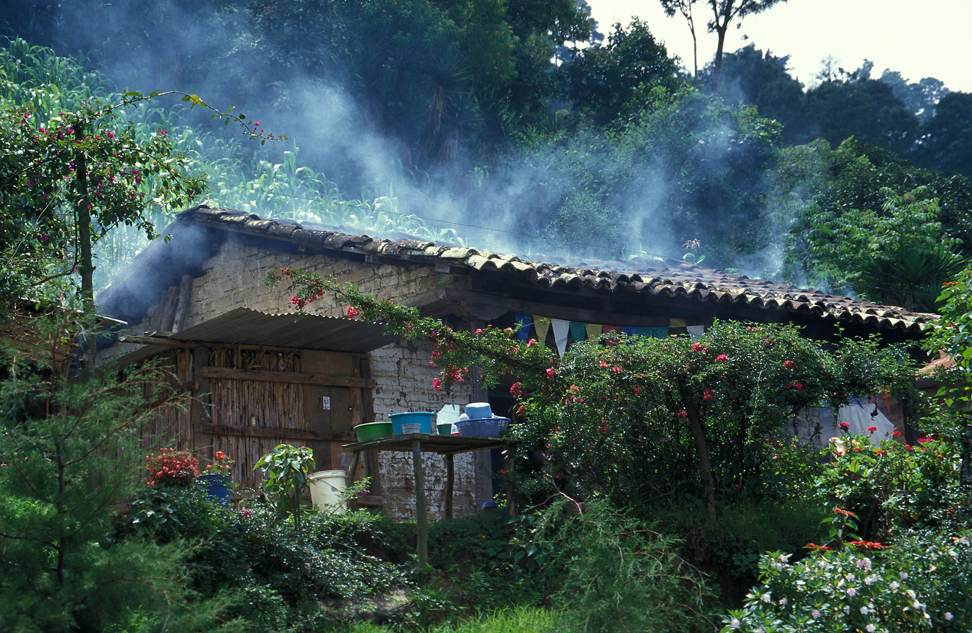 Cookstove smoke emerging from roof of a house in rural Guatemala