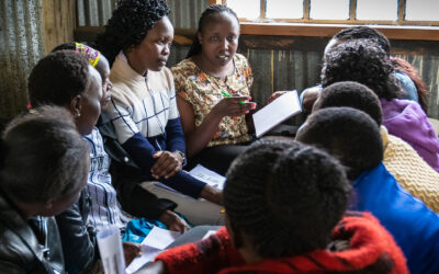 Towards clean household energy in Africa: experience from the front line in Kenya