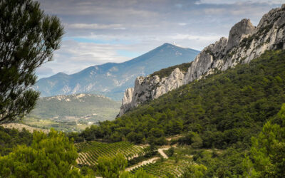 Joining the Crazy Club at 60 – three ascents of Mt Ventoux in one day for an African charity