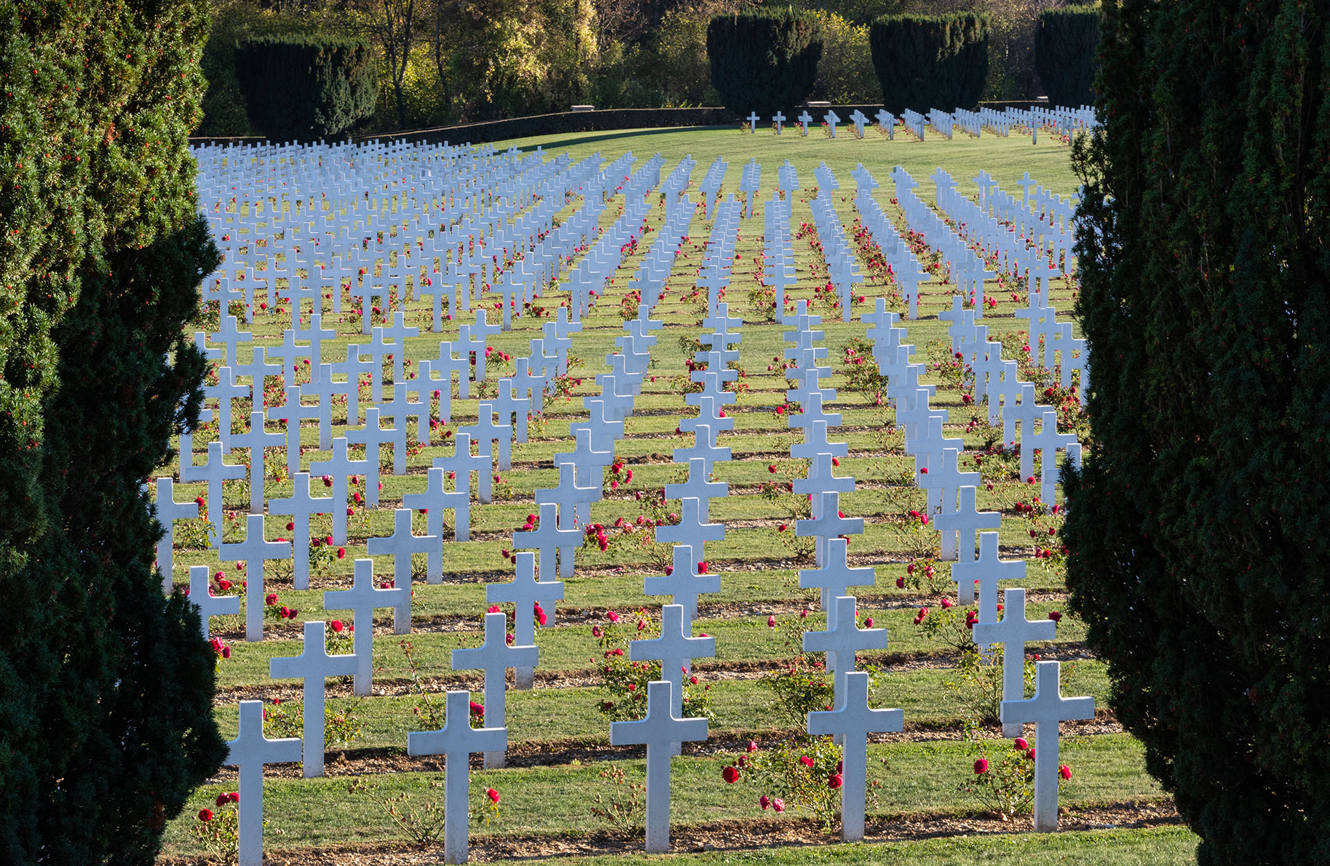 The vast cemetery beside the Douaumont ossuary at Verdun, with more than 16,000 graves