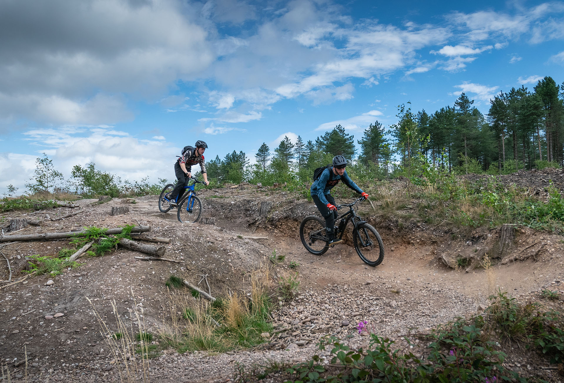 Drop-offs and berm on the 'Aunt Flow' section of Follow the Dog, one of the red-graded trails at Cannock Chase